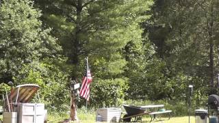 Some Tree Line Scenic Shots and the Flag