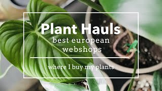 European plant shops - before the PLANT HAUL - where I buy my rare house plants / Webshop Review