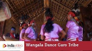 Wangala dance of Garo tribe, Meghalaya