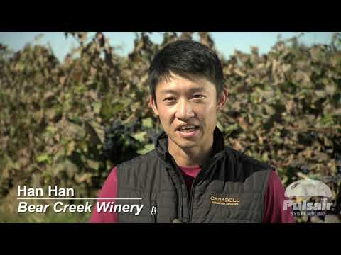 Wine Tank Agitator/Mixer | Bear Creek Winery