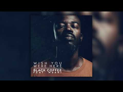 Black Coffee & Msaki – Wish you were here Video