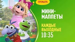 Disney Channel Russia continuity - 24-09-18