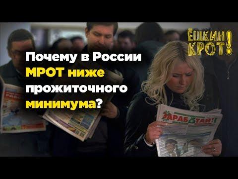 Почему в России зарплаты ниже прожиточного минимума?