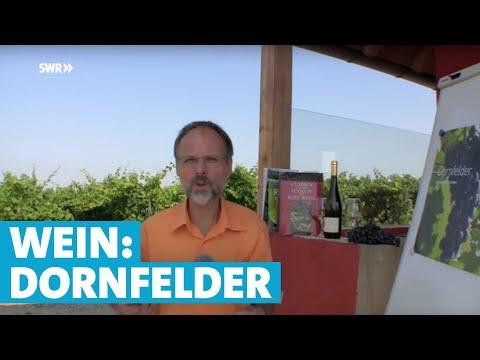 Werner erklärt Wein: Dornfelder | SWR | Landesschau Rheinland-Pfalz
