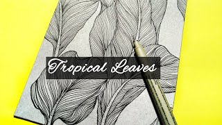 Tropical Leaves Drawing | Line Art | Illustration