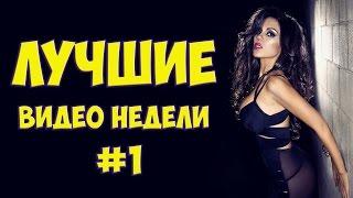 Лучшие видео недели! #1