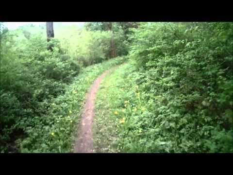 Single frauen aus greifswald