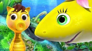 Baby SHARK Song | Nursery Rhymes & Kids Songs! | Cartoons For Kids | Shark Songs