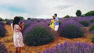 preview picture of video 'Лавандовые поля, Спарта, Турция / lavanta kokulu köy ısparta'