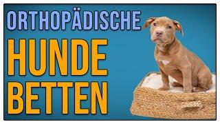 Orthopädische Hundebetten - Sinnvoll oder Geldverschwendung? - TGH 342