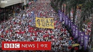 逃犯條例:香港百萬大遊行抗議修訂《逃犯條例》- BBC News 中文 |一國兩制|