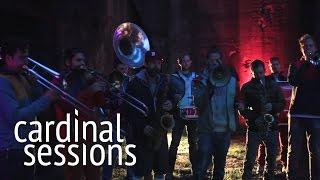 Moop Mama   Komplize   CARDINAL SESSIONS (Traumzeit Festival Special)