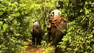 preview picture of video 'Mondulkiri, Cambodia (travelloops.com)'