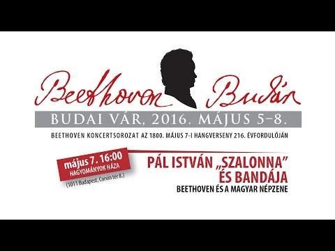 """Beethoven Budán 2015 - Pál István """"Szalonna"""" és bandája - video preview image"""