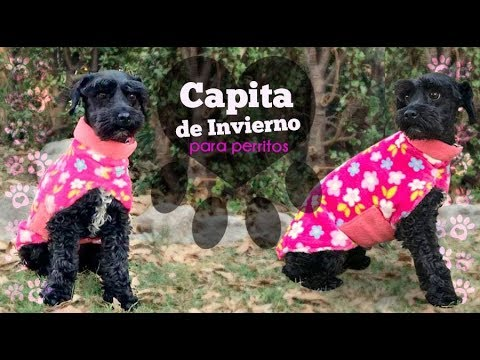 Ropita para perro :: Capa de Inviernos para Perritos :: Chuladas Creativas