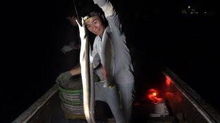 阿烽请老爸出海带路,鳗鱼钓一下抓到几十斤大货,今晚真的发财了