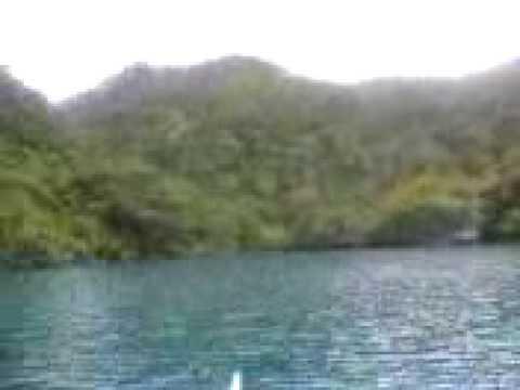 Bulate kung paano upang makilala at tinatrato