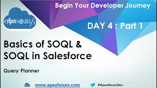 Basic of SOQL and SOSL in Salesforce | Query Plan| DAY 4 Part 1
