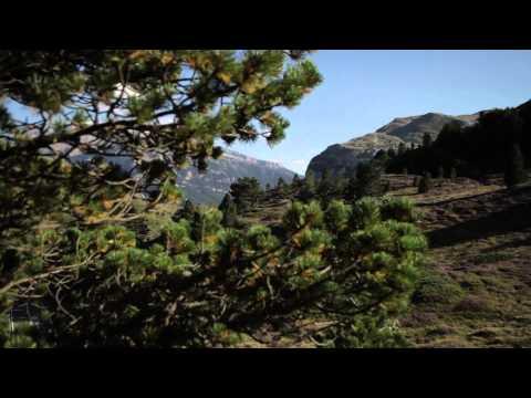 Bande annonce Film Compostelle, le chemin de la vie