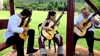 Magico Guitar Trio #317