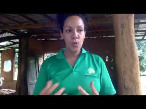 Please -Help Us Establish our own Permaculture Farm