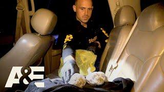 Live PD: Cop Calls w/ Pasco County, FL | A&E