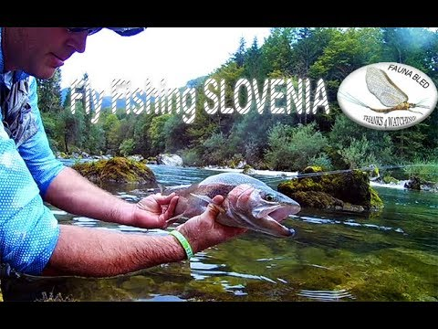 Spring time Fly Fishing - Slovenia