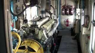 Тяжелый запуск дизель-поезда ДР1А-225 / Hard engine start of DR1A-225 DMU