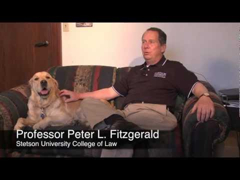 Stetson Law Professor Discusses Animal Law