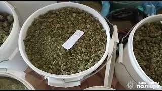 У жителя Николаевской области изъяли 40 кг наркотиков стоимостью на «черном» рынке» 8 миллионов