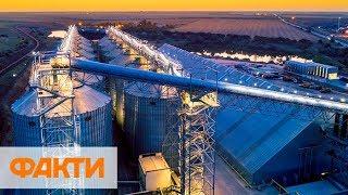 Самый дорогой агропроект Украины. Как работает новый зерновой терминал Нептун