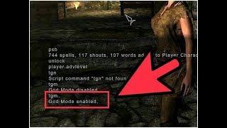 Skyrim:как вводить чит-код (как поменять язык в консоле)