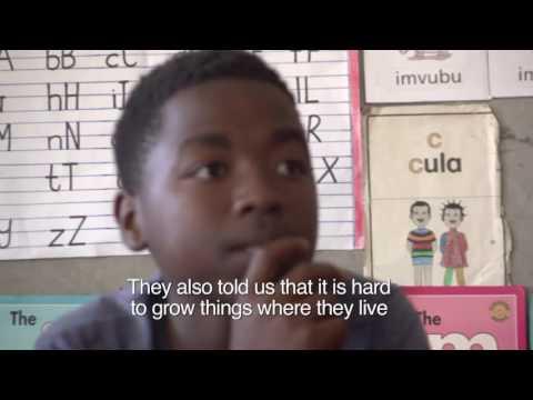 Ikhaya Garden: Soil Artists