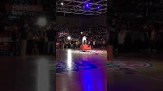 Sessel Showact beim FC Bayern Basketball