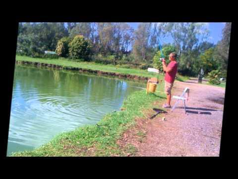Macchine fotografiche subacquee per valutazione di pesca invernale