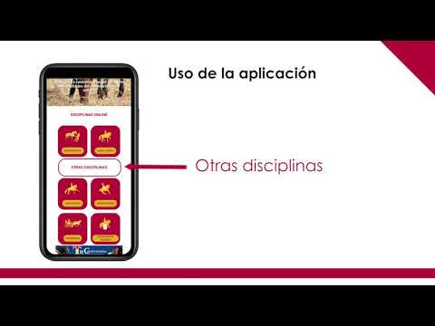 video ancce