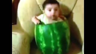 Best Vines: How to eat a watermelon
