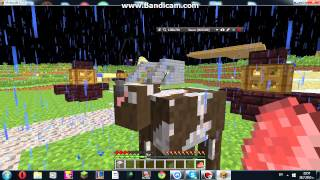 minecraft survival s penguin