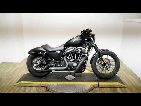 2015 Harley-Davidson Iron 883™ in Wauconda, Illinois - Video 1