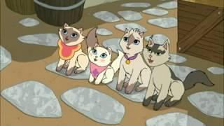Sagwa, the Chinese Siamese Cat - Dongwa's Best Friend