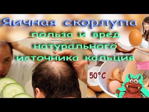 Яичная скорлупа: польза и вред натурального источника кальция.