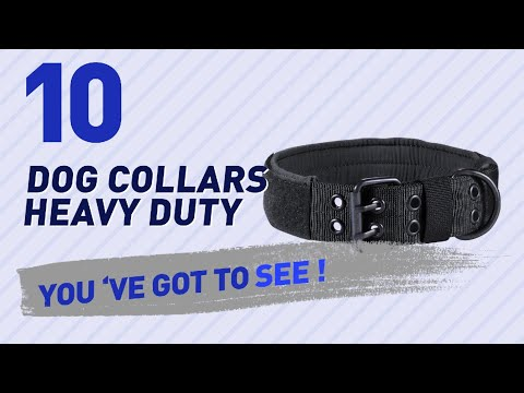 Dog Collars Heavy Duty // Top 10 Most Popular