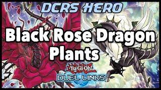 akiza black rose dragon deck duel links - Thủ thuật máy tính - Chia