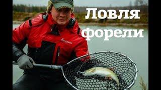 Платные пруды для рыбалки ижевск