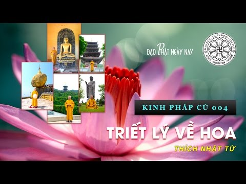 Kinh Pháp Cú 04: Triết lý về hoa (03/10/2010) Thích Nhật Từ