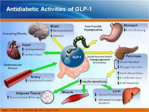 Gesetz über die Rechte von Diabetics