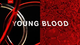 Everything wrong with the young blood injection craze