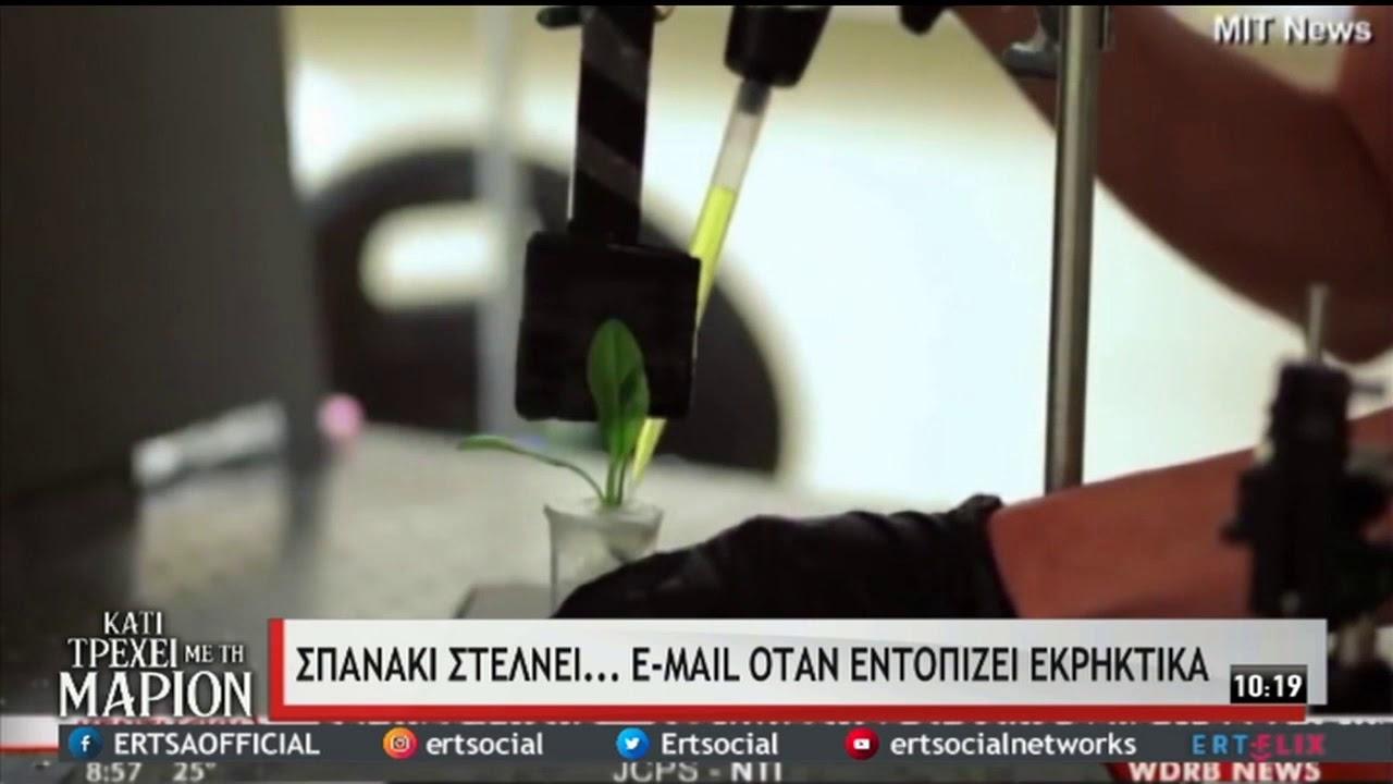Σπανάκι στέλνει… e-mail όταν εντοπίζει εκρηκτικά!   13/2/2021   ΕΡΤ