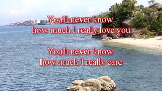 Do You Want To Know A Secret (with lyrics) - The Beatles ( Cover by Bobit )