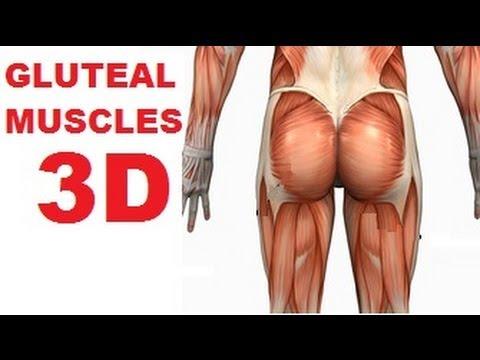 Jak najlepiej rozwijać mięśnie